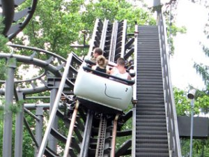Bannister Wild Mouse