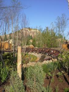 Seven Dwarves Mine train 3