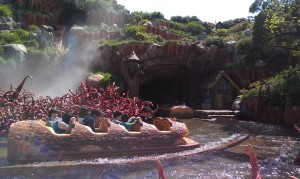 Splash Mountain TDL (2)
