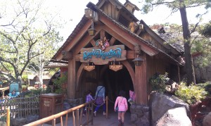 Splash Mountain TDL