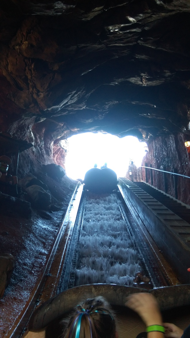 Splash Mountain WDW (5)