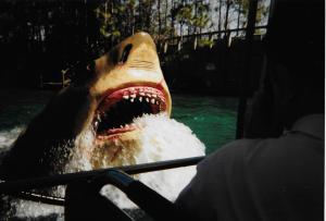 Jaws USF 1998