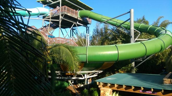 Tassie's Twister FL (4)