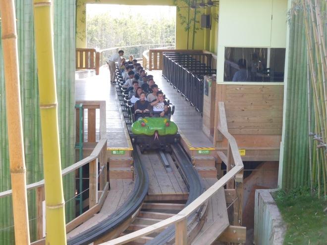 Python in Bamboo Forest Wanda Theme Park Nanchang Millennium Flyers (1)