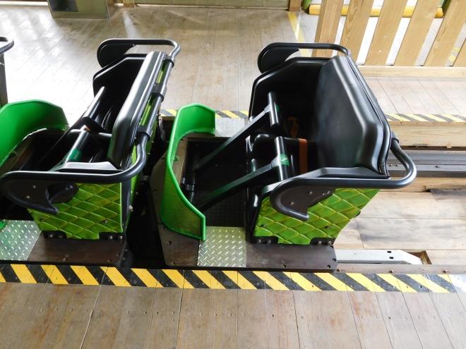 Python in Bamboo Forest Wanda Theme Park Nanchang Millennium Flyers (2)