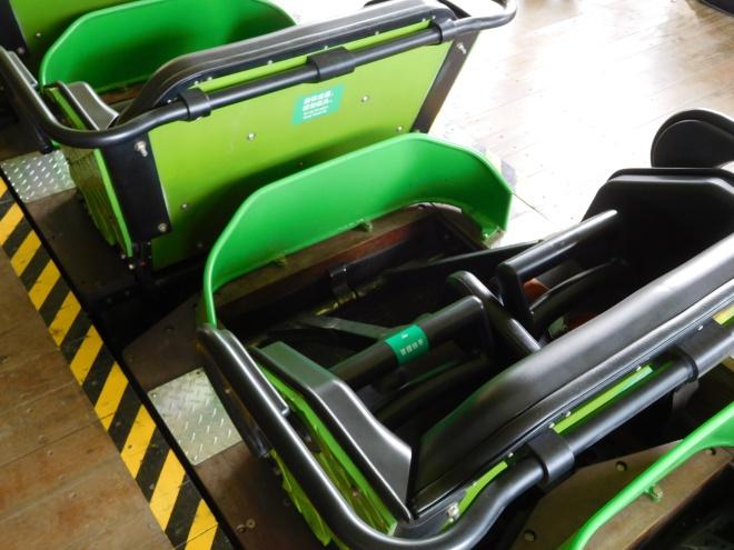 Python in Bamboo Forest Wanda Theme Park Nanchang Millennium Flyers (3)