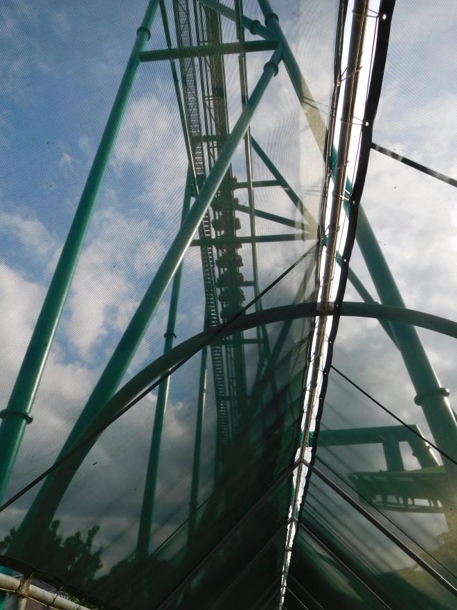 Raptor Cedar Point (16)