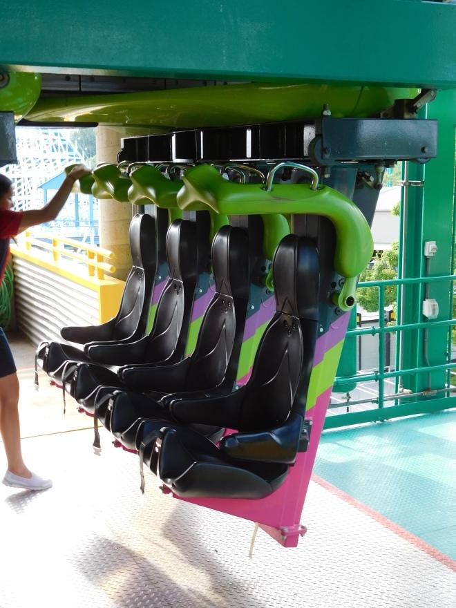 Raptor Cedar Point (26)