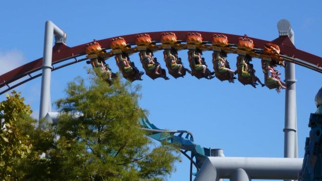 Dragon Challenge Flex 6