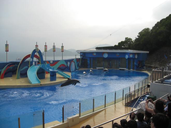 ocean-park-2010-3