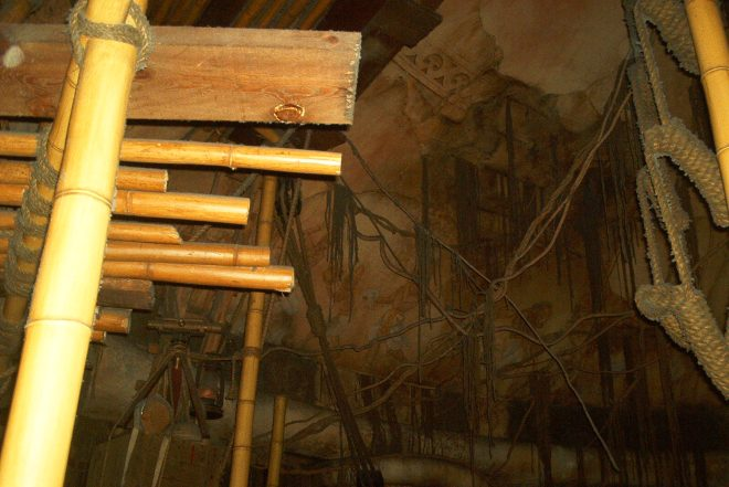 Indiana Jones Adventure Waiting Line DL (8)