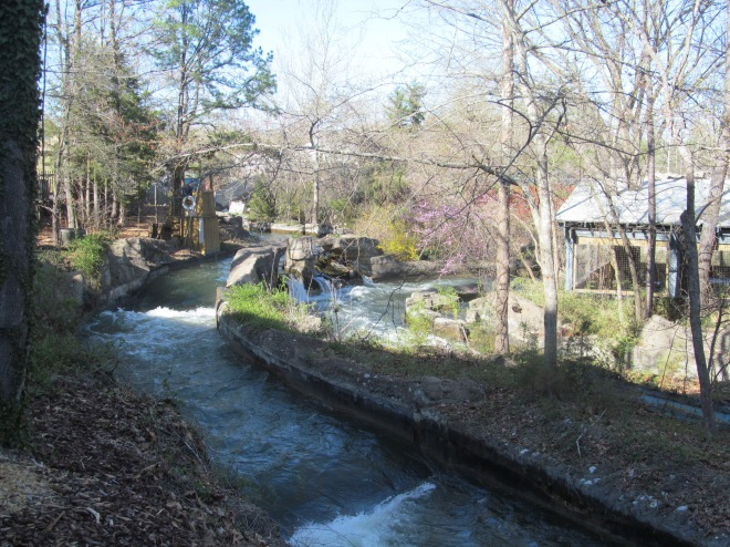 Lost River of the Ozark Silver Dollar City (6)