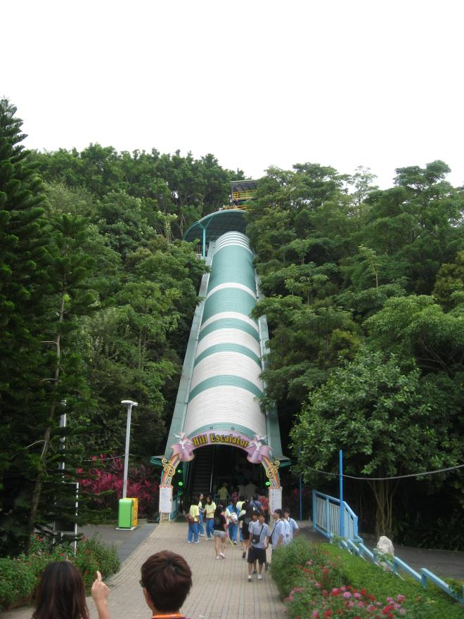 G5 Dive Coaster Janfusun Fancyworld (7)