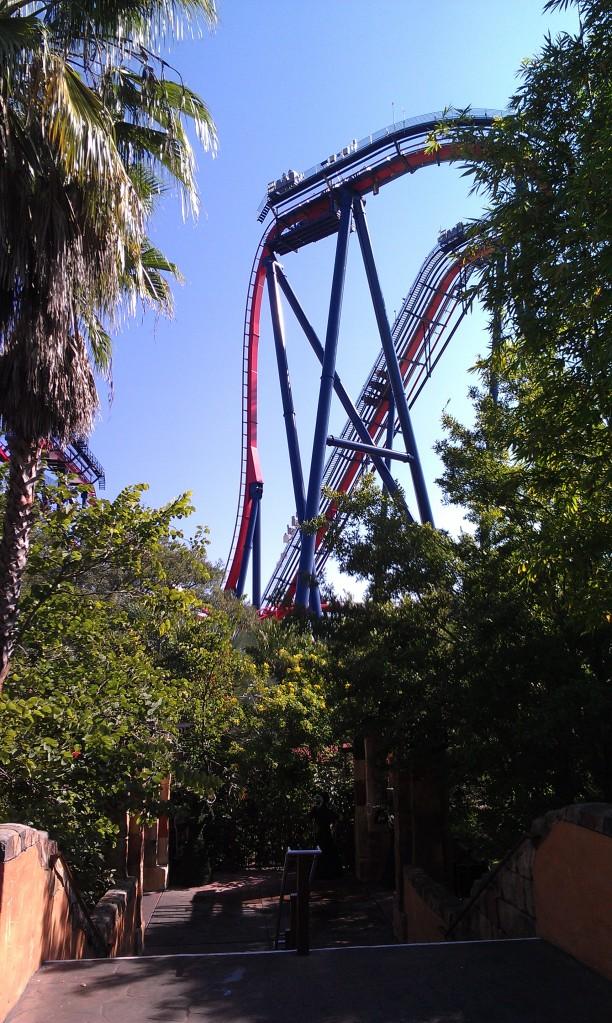 Sheikra Busch Gardens Tampa (16)