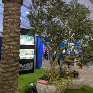 The amazing fake grass and smaller trees that the company brought to Orlando. It made that portion of Exploration Station feel a lot nicer.